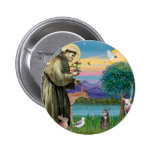 Cat (Tabby 2) - Saint Francis Pinback Button