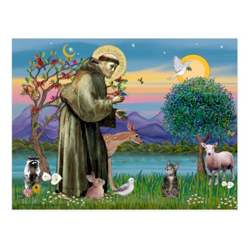 Cat (Tabby 2) - Saint Francis Post Cards