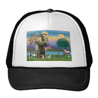 Cat (Tabby 2) - Saint Francis Trucker Hat
