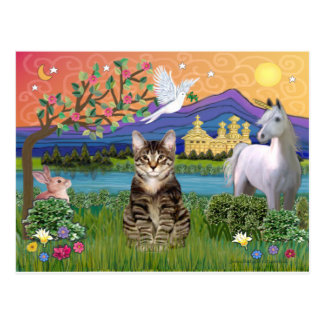 Cat - Tabby - Fantasy Land Post Card