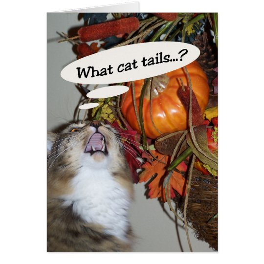 Cat Tails Card