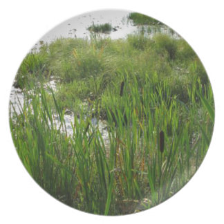 cat tails plate