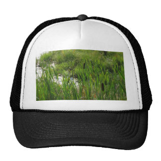 cat tails trucker hat