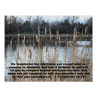 cat tails with bible verse 1 Corinthians 10:13 Poster