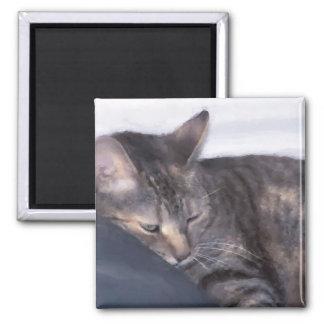 cat taking a nap fridge magnet