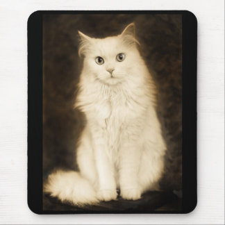 CAT TAPETE DE RATON