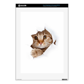 Cat tearing paper - looking cat - cute cats - pet skin for the PS3 console