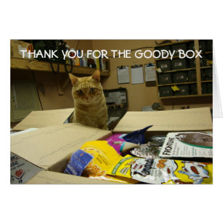 Cat thank you note card