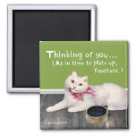 """Cat """"Thinking Of You - Time To Plate Up"""" Magnet"""