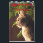 "Cat Thoughts Calendar<br><div class=""desc"">Wonder what cats are thinking? well here is a few ideas. For any person who loves the company of cats.</div>"