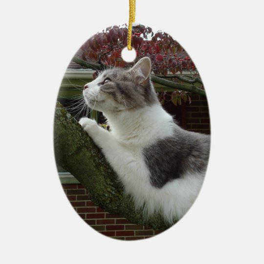 Cat Thoughts Ceramic Ornament