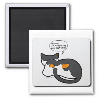 Cat Thoughts Magnet