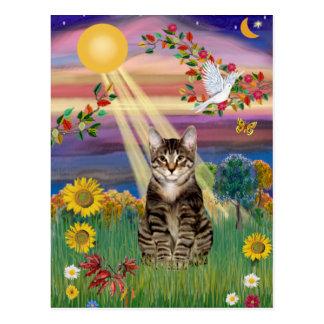 Cat (Tiger) - Autumn Sun Post Card