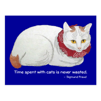 Cat Time Postcard