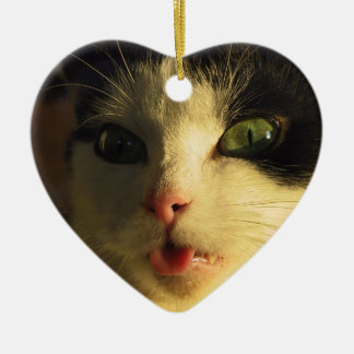 Cat Tongue Ceramic Ornament