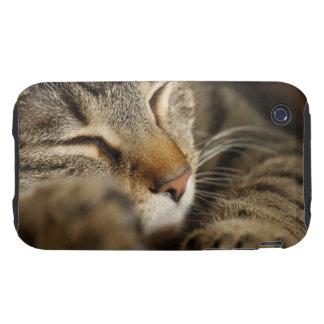cat tough iPhone 3 case