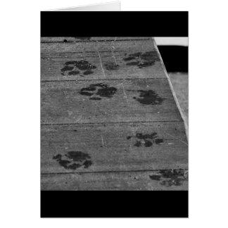 Cat Tracks Card