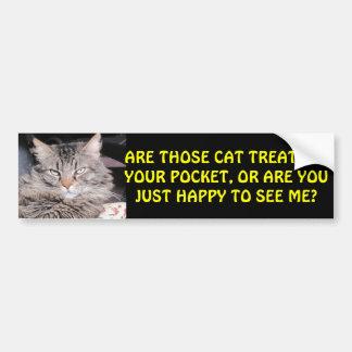 Cat Treats in Your Pocket? Bumper Sticker
