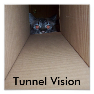 Cat Tunnel Vision Poster