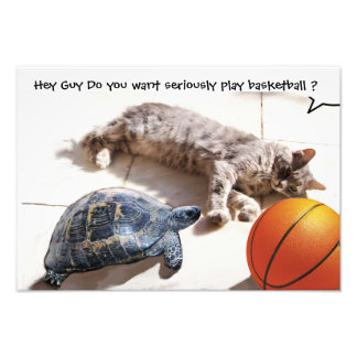 CAT ,TURTLE  AND BASKETBALL PHOTO PRINT
