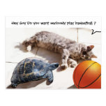 CAT ,TURTLE  AND BASKETBALL POSTCARD