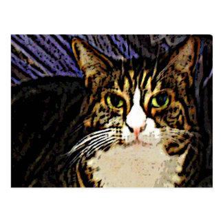 Cat under a sheet postcard