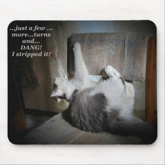 Cat upholstery repair meme mouse pad