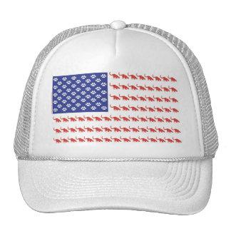 Cat/USA patriótico Gorras De Camionero