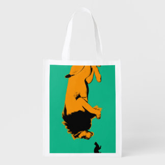 Cat Versus Lion Ready to Fight or Take On Grocery Bag