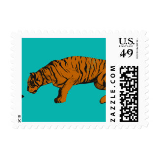 Cat Versus Tiger Ready to Fight or Take On Postage