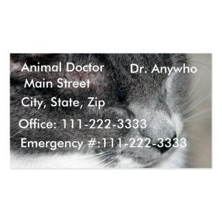 Cat Vet Profile/Business Card Business Card