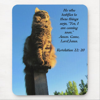 Cat, waiting for Jesus Revelation Mouse Pad