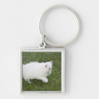 Cat walking in lawn keychain