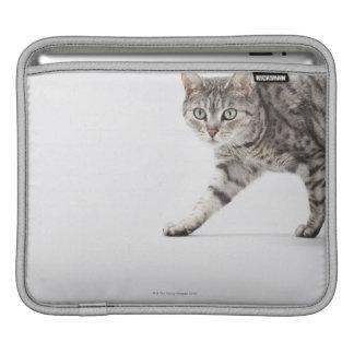 Cat walking iPad sleeve