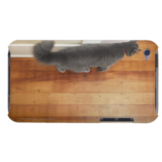Cat walking iPod Case-Mate case