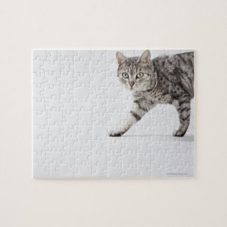 Cat walking jigsaw puzzle