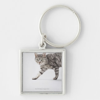 Cat walking keychain