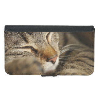 cat wallet phone case for samsung galaxy s5