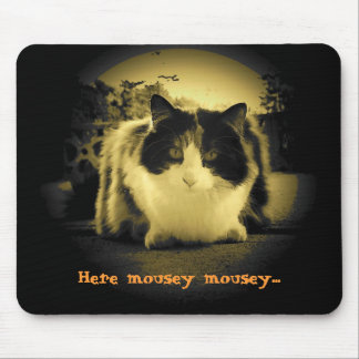 Cat Wants Mice to Come Out and Play Mouse Pad