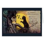 Cat Warning Owl Halloween Greeting Card