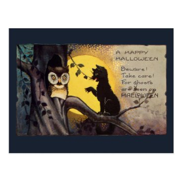 Halloween Themed Cat Warning Owl Vintage  Halloween Postcard