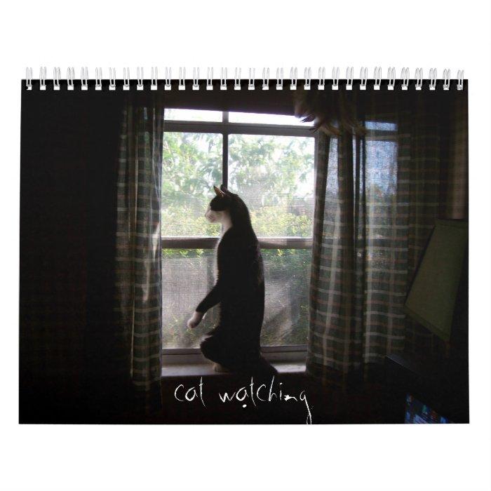 cat watching calendar