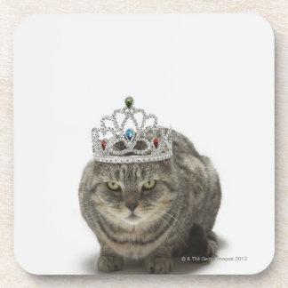 Cat wearing a tiara drink coaster