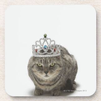 Cat wearing a tiara coaster