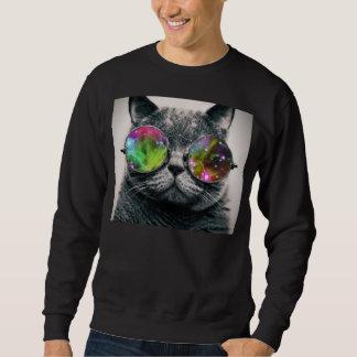 cat wearing aviator sunglasses sweatshirt