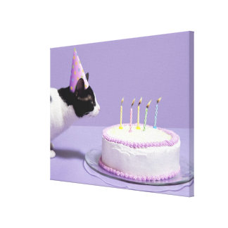 Cat wearing birthday hat blowing out candles on canvas print