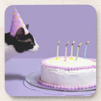 Cat wearing birthday hat blowing out candles on coaster