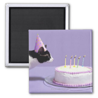 Cat wearing birthday hat blowing out candles on magnet