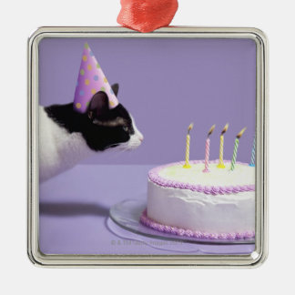 Cat wearing birthday hat blowing out candles on metal ornament