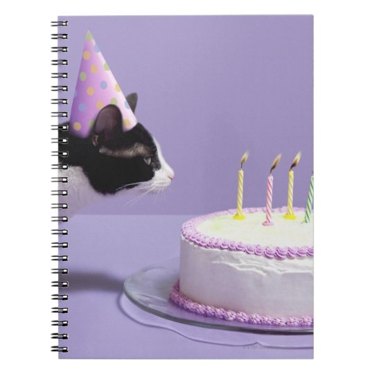 Cat wearing birthday hat blowing out candles on notebook